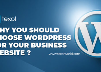 Why You Should Choose WordPress For Your Business Website