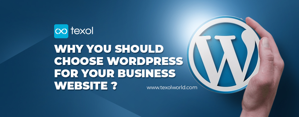 texol-blog-why-you-should-choose-wordpress-for-your-business-website